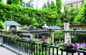 Espacio en que tendrá lugar el evento, el Jardín del Hotel Miguel Ángel.