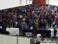 Foto Vinofest ediciones anteriores
