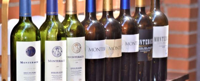 EN BAJA vinos