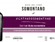 BANNER-catandosomontano2018